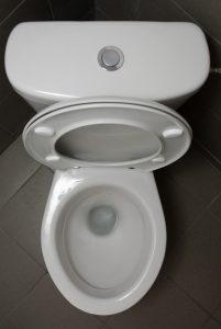 toilet-with-button-flush